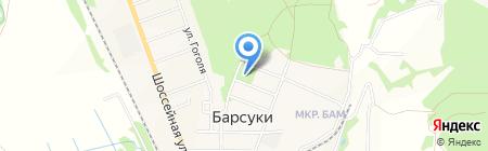 Врачебная амбулатория на карте Барсуков