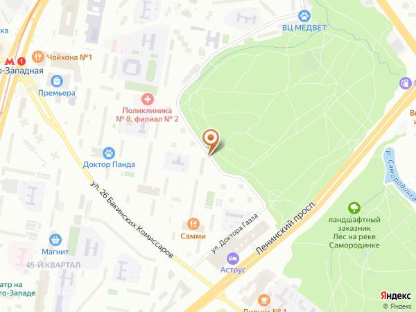 Остановка «Юго-Западный лесопарк», улица Доктора Гааза (1008998) (Москва)