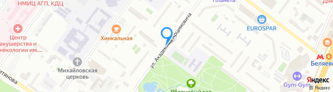 улица Академика Арцимовича
