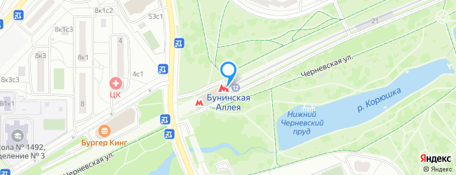 метро Бунинская аллея