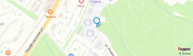 улица Академика Капицы