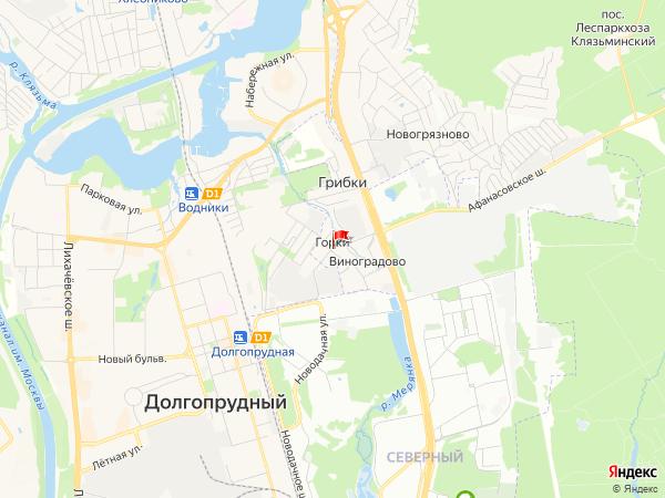 Карта населенный пункт Горки