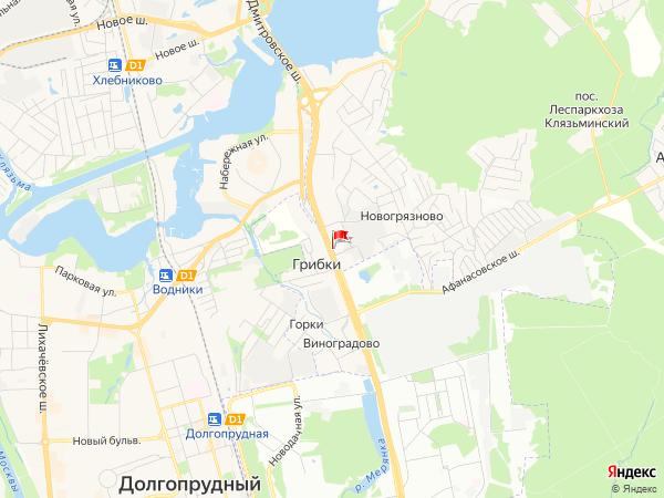 Карта населенный пункт Грибки