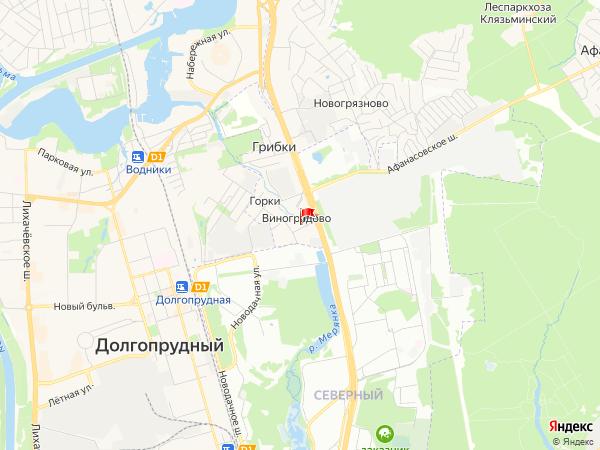 Карта населенный пункт Виноградово