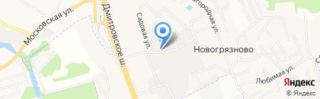 Вика-Двина на карте Грибков