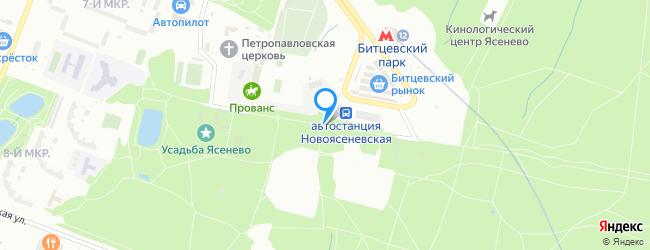 Новоясеневский тупик