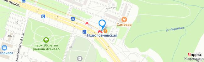 метро Новоясеневская