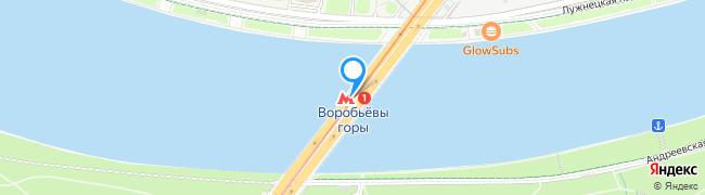 метро Воробьёвы горы