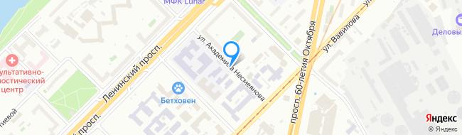 улица Академика Несмеянова