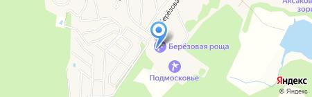 Берёзовая роща на карте Аксаково