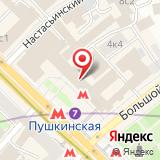 Авторская школа Васильевых