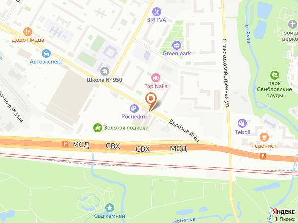 Остановка Березовая аллея, 5 в Москве