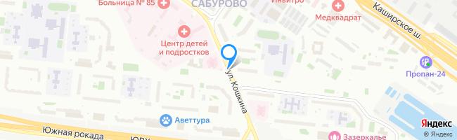 улица Кошкина