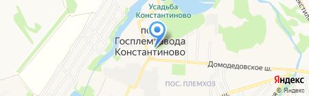 Константиновская амбулатория на карте государственного племенного завода
