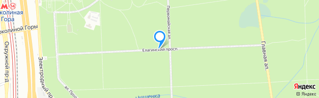 Елагинский проспект