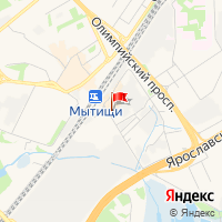 TDS Language School в Мытищах
