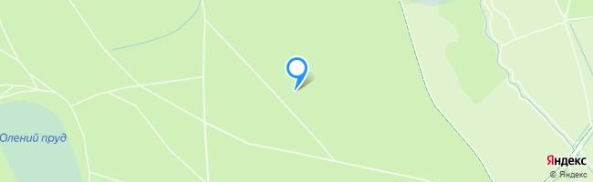 мцк Измайлово