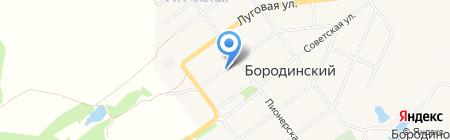 Фея на карте Бородинского