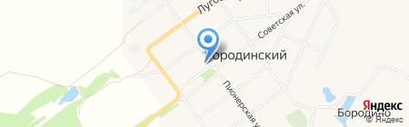 Магазин бытовой химии и постельных принадлежностей на Пионерской на карте Бородинского