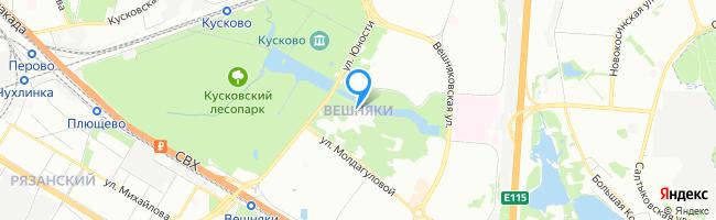 район Вешняки