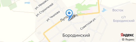 Assorti на карте Бородинского