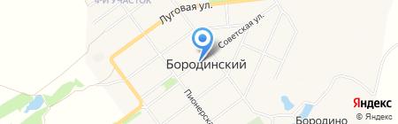 Люси на карте Бородинского
