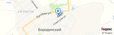 Бородинская городская библиотека на карте Бородинского