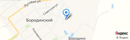 Детский сад №3 Светлячок на карте Бородинского