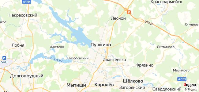 Москва Ярославская - Красноармейск электричка в Красноармейске