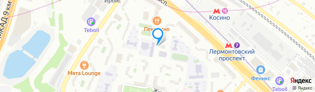 Пронская улица