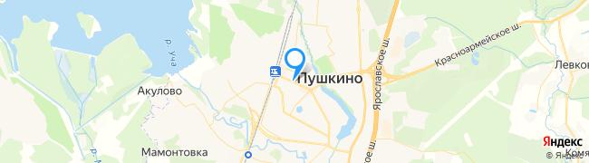 город Пушкино