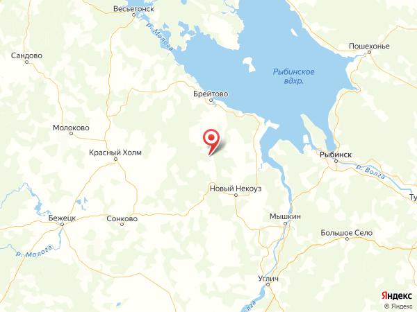 деревня Лопатино на карте