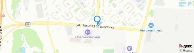 улица Николая Старостина