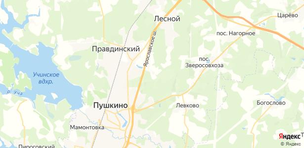 Костино на карте
