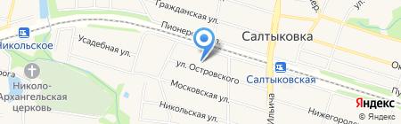 РОСНО-МС на карте Балашихи