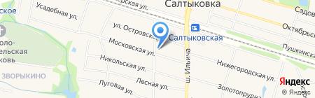 Салтыковская библиотека на карте Балашихи