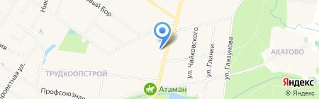 Проект-Сервис на карте Балашихи