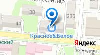 Компания Олеся на карте