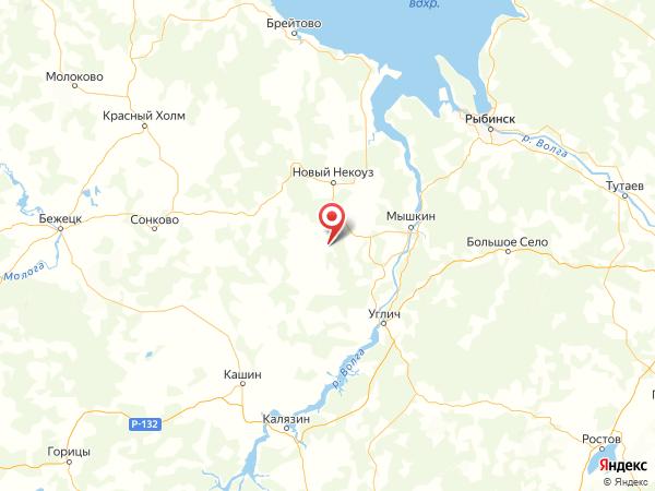 деревня Черноусово на карте