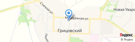 Грицовский коммунальщик на карте Грицовского