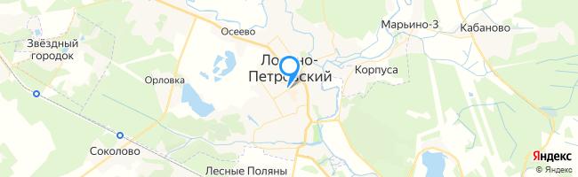 город Лосино-Петровский