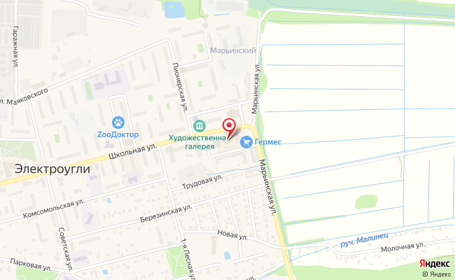 Карта расположения пункта доставки Электроугли Школьная в городе Электроугли