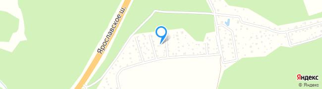 Центральная улица (пос. Новобратцевский)