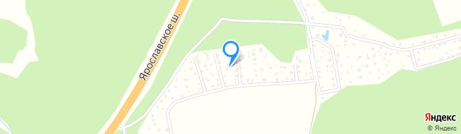 Лесная улица (пос.Толстопальцево)