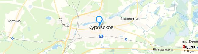 город Куровское