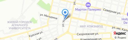 Елена на карте Краснодара