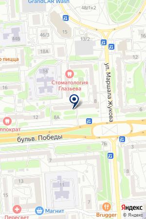 Выбор на карте Воронежа