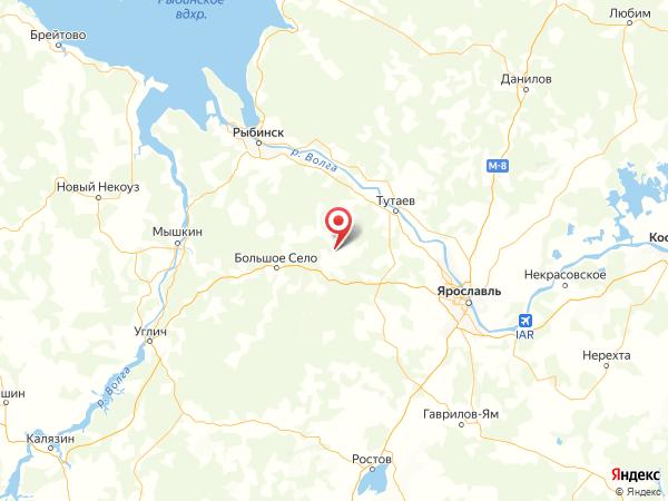 деревня Лесное Варегово на карте