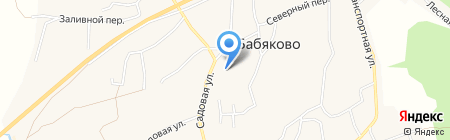 Бабяковская средняя общеобразовательная школа №1 на карте Бабяково