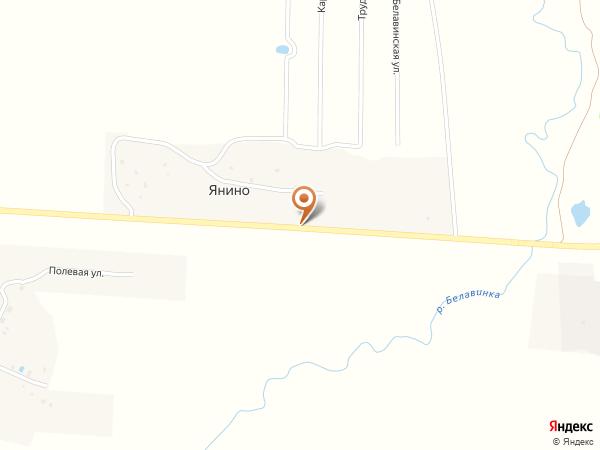 Остановка Янино (Московская область)